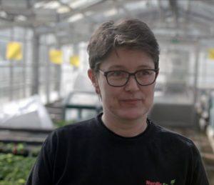 germination test procedure nordic seed danish agro case image